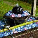 手水鉢を彩る花手水。ぎっしりと敷き詰められた紫陽花 – SONY α7 III(ILCE-7M3)撮影