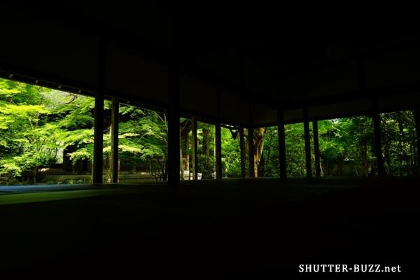 誰にも教えたくない京都・新緑スポット