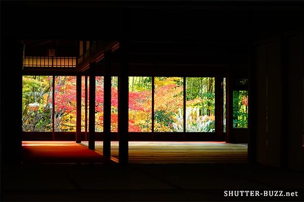南禅寺天授庵の部屋越しに見る紅葉